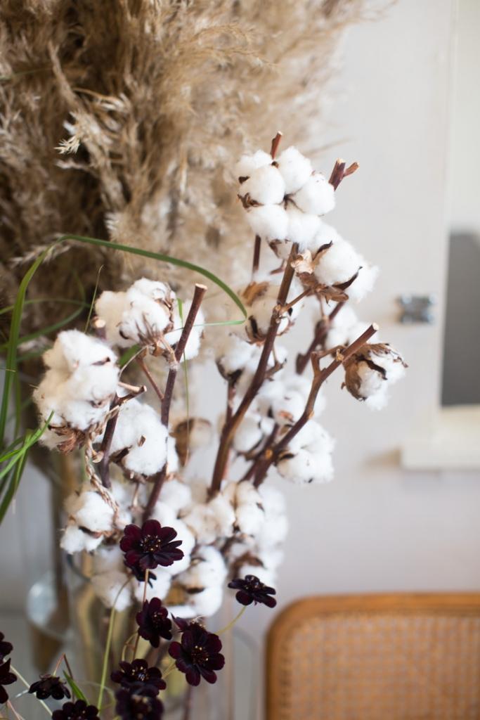 Cotton on display at Rook & Rose Flower shop
